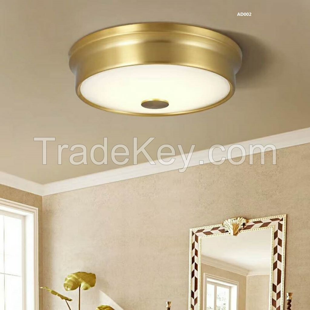 ceiling lignt / home lighting / LED lighting