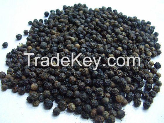 Black Pepper (Piper Guineense)
