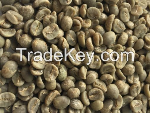 high quality robusta and arabica coffee beans