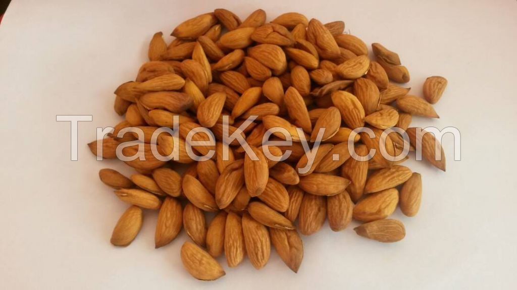 High quality almond kernel - 2017 harvest