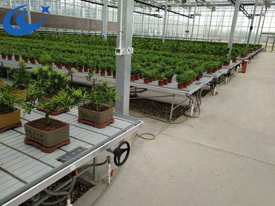Aluminum Alloy Frame Metal Greenhouse Rolling Benches for Agricultura