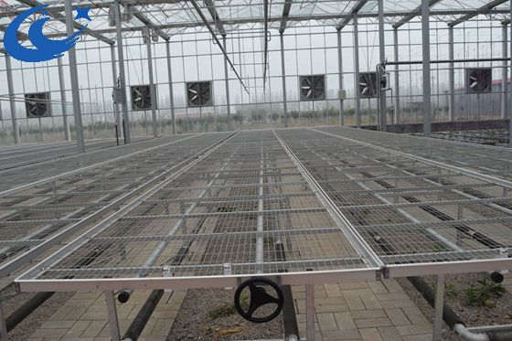 greenhouse wire mesh rolling bench growing table