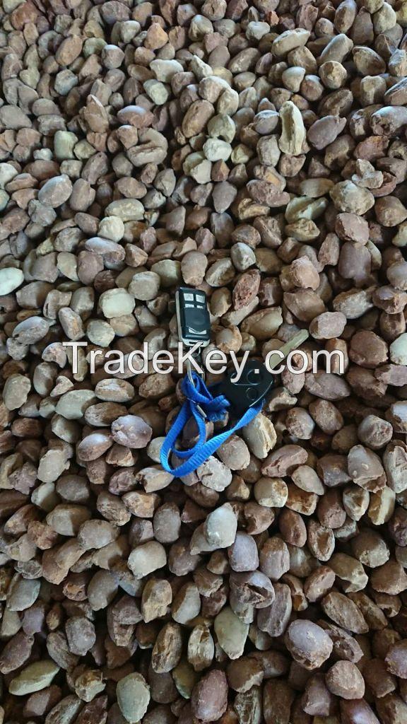 Dead Burned Magnesite in Refractory (dBm94)