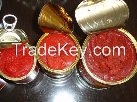 18%-20%  22%-24%  26%-28%  28%-30%, TOMATO SAUCE & Diced tomatoes & tomato paste with HALAL, KOSHER