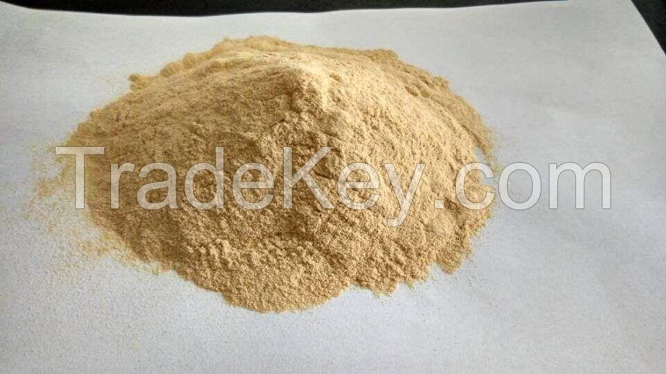 80/200 Mesh Gum Xanthan / Food Additive