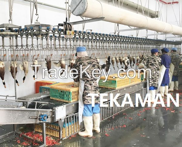 OVERHEAD CONVEYOR - POULTRY DEFEATHERING - POULTRY PROCESSING EQUIPMENT
