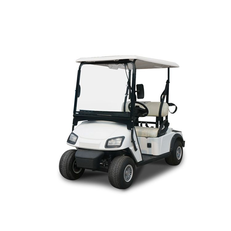 Electric vehicle 2 seater golf carts