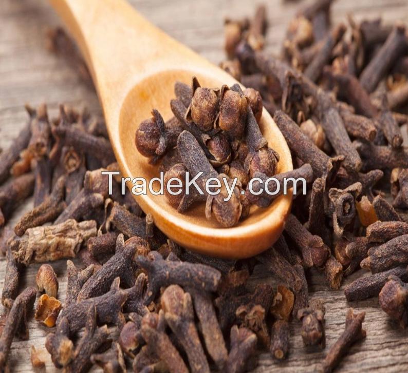 High Quality Dry Clove Spices