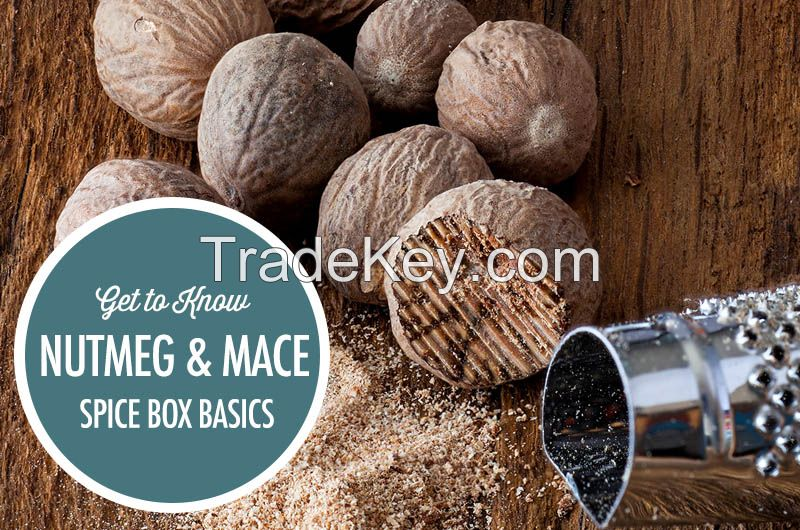 Cheap Natural Nutmeg and Mace