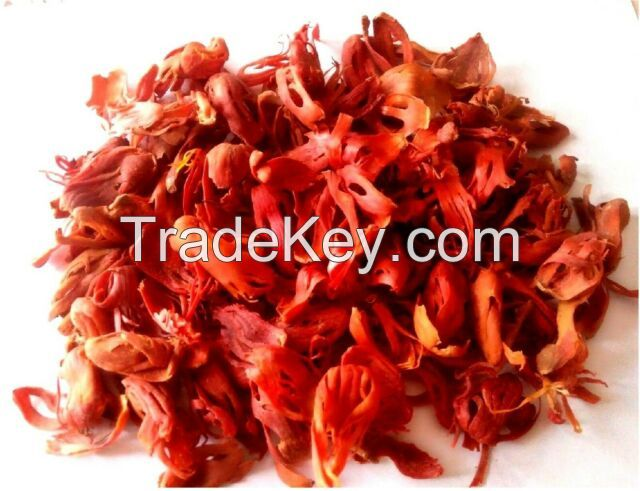 High Quality Natural Mace Spice