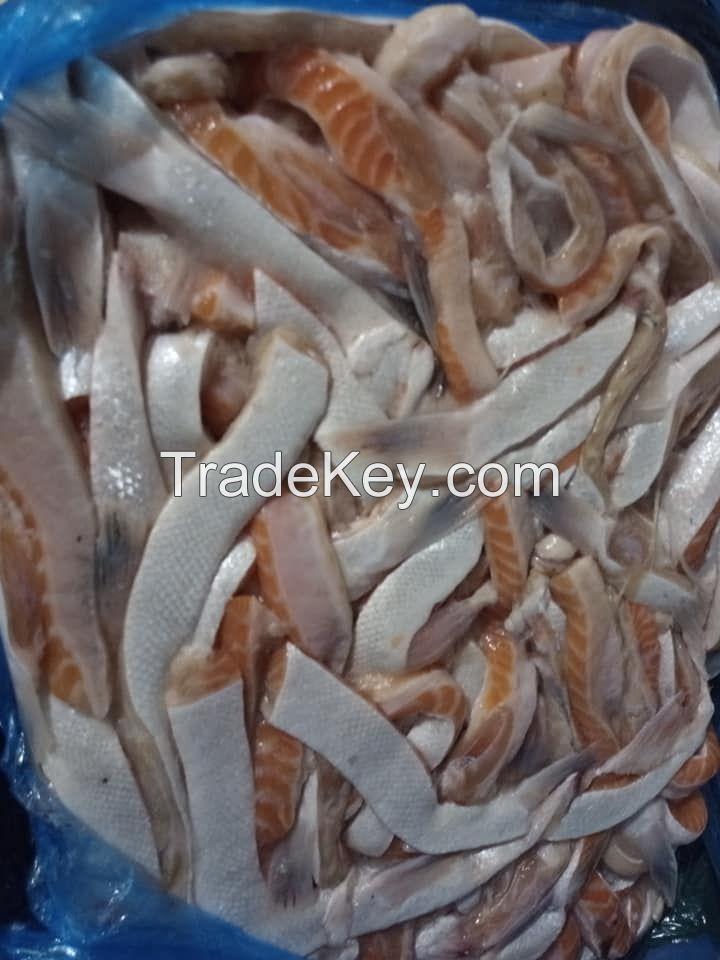 Frozen Atlantic Salmon Belly