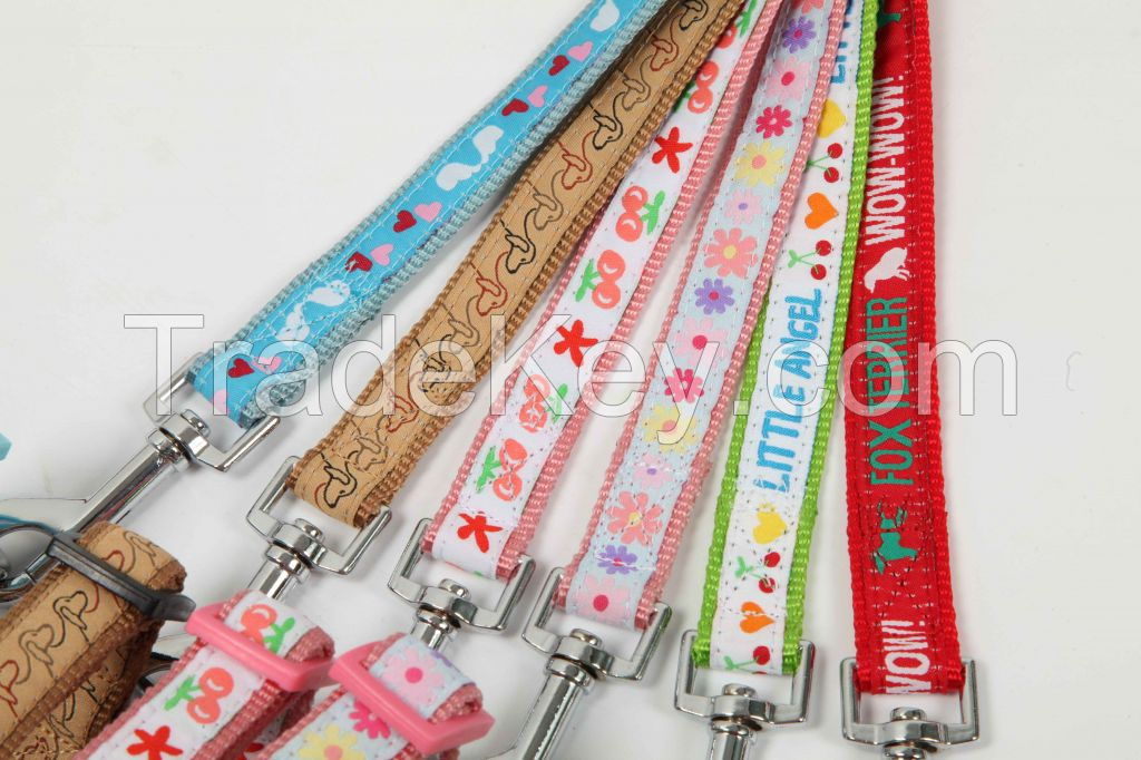 Embroidery ribbon harness + leash