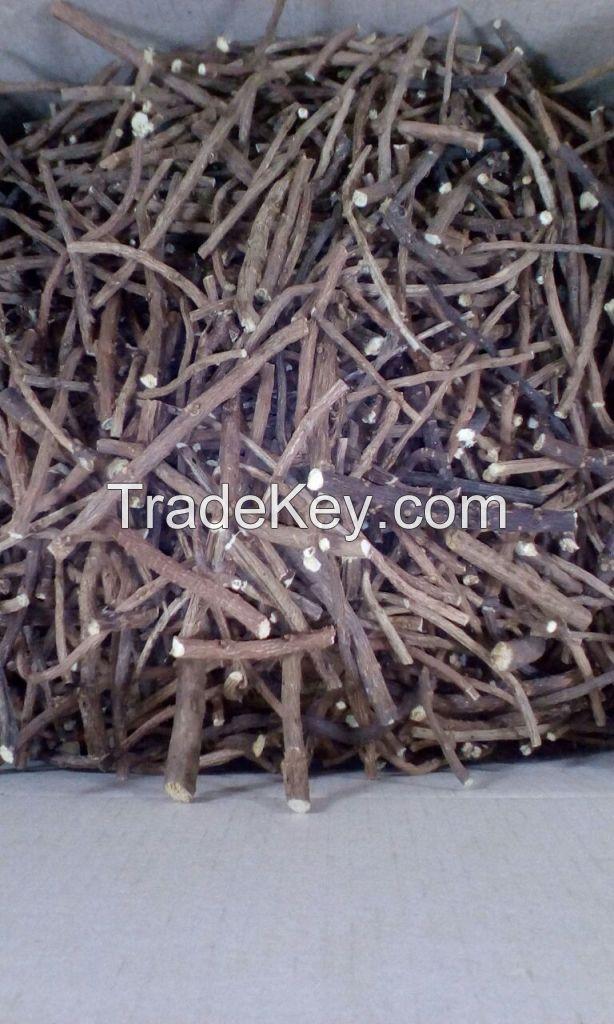 Siberian Licorice Glycyrrhiza uralensis