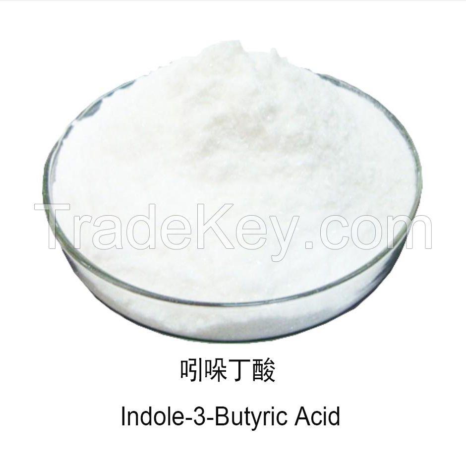Plant Growth Regulator IBA Indole-3-Butyric Acid 98% TC