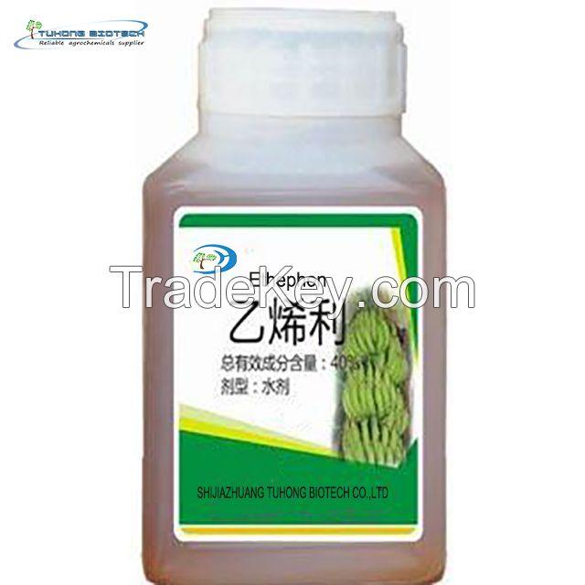 Fruit Ripener Plant Growth Regulator ETH Ethephon 400 g/l SL
