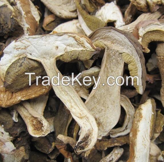 Dried Boletus Edulis sliced