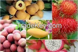 fresh fruit, dried fruit, canned fruit, vegetable, Dragon fruit, lemon, lime, banana, coconut, banana, rambutan