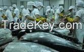 dried shrimp, dried fish, Frozen seafood fish:  tuna, tilapia, shrimp, pangasius, marlin ect , , ,