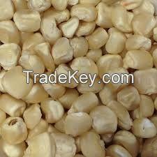 High Quality Raw Maize Corn Yellow White