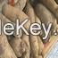 edible tuber,  Dioscorea