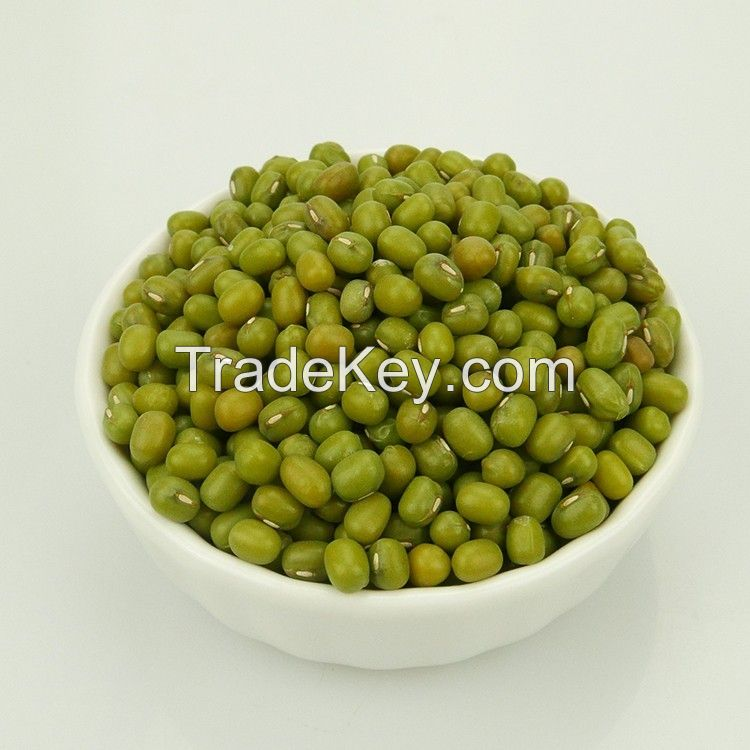 High Quality Green Mung Beans with low price