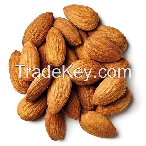 Grade AAAA Almond Nuts / Raw Natural Almond Nuts for Sale