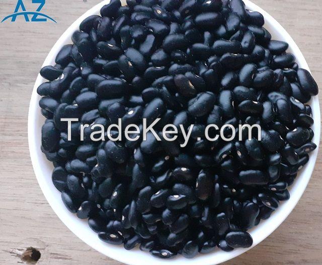 Bulk Dried Black Kidney Beans