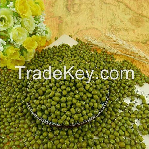 Best price Mung beans,  Vigna Beans