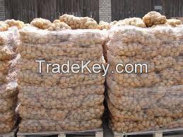 Fresh Potato/Fresh Holland Potatoes