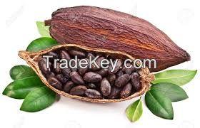 Sell INSTANT COCOA POWDER - 200g/Box - Viet Deli Coffee Co., Ltd
