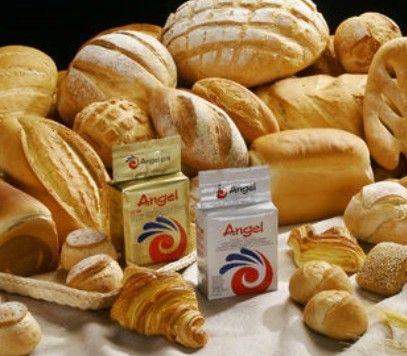 Angel baker yeast, high sugar yeast
