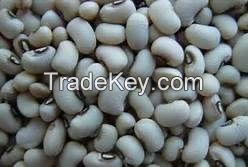 Premium Quality Black Eye Beans