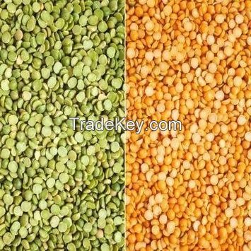 Red Lentils / Green Lentils
