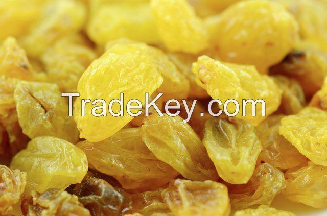 Indian Golden Raisins