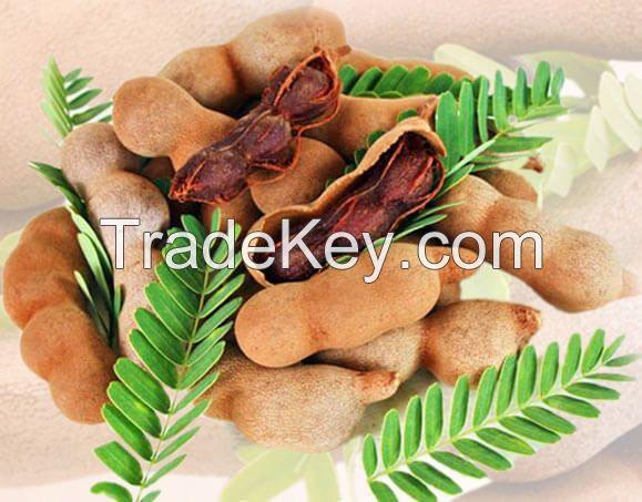 Indian Tamarind