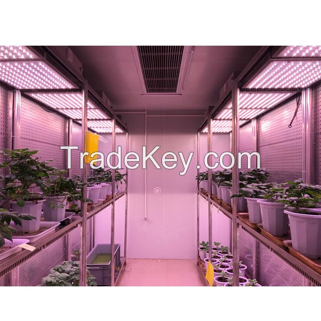 Walk-in Plant Chamber/Incubator with High Intensity LED Lighting System for Indoor Plant Growth and Science Research