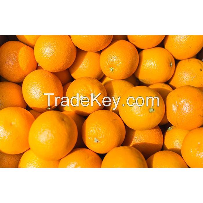 Fresh Orange , Valencia and Naval