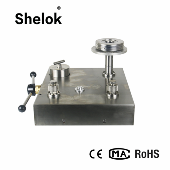 DWT oil piston dead weight tester for pressure gauges transmitters