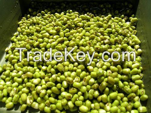 Mung bean from Vietnam High quality