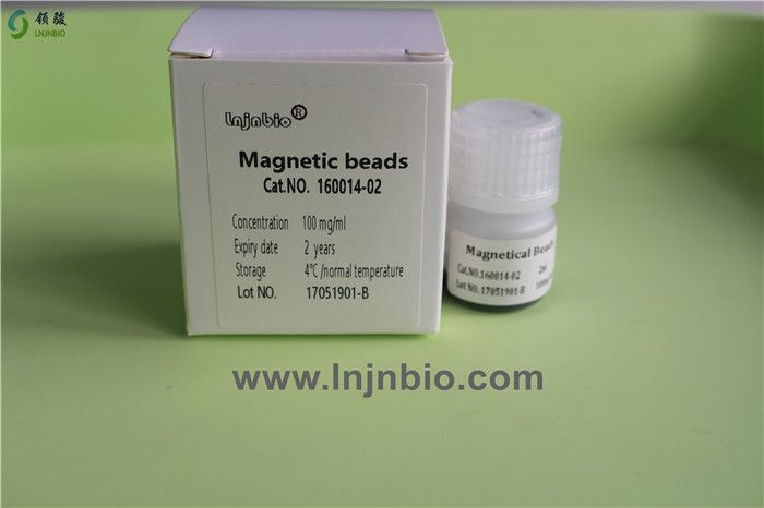 nucleic acid extraction magnetic beads/particle