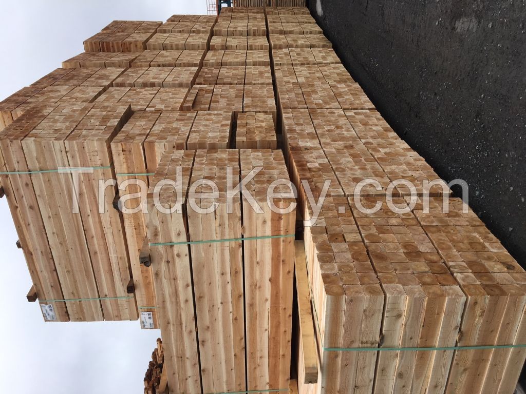 Northern white cedar square timber and boards