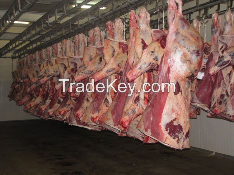 frozen beef, goat and lamb meat