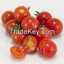 Organic cherries tomatoes