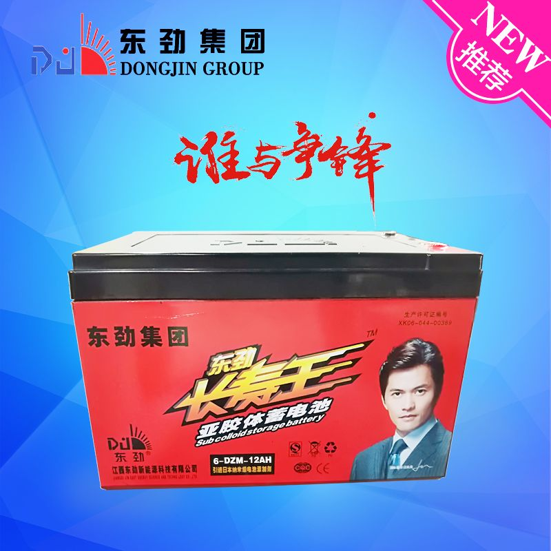 Competitive Price 12V12ah Electric Vehicle Battery