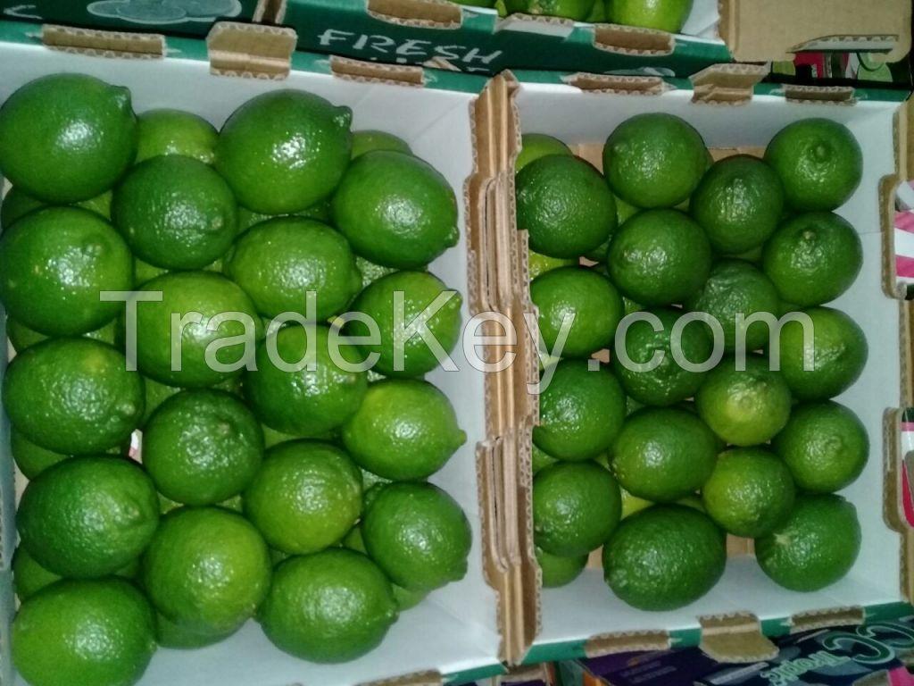 Green Lemon, Persian Lime