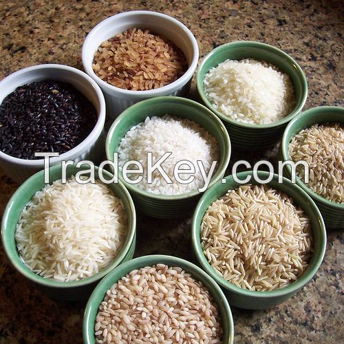 BASMATI RICE, JASMINE RICE, BLACK RICE, PARBOILED RICE, CALROSE RICE, LONG GRAIN WHITE RICE, SHORT GRAIN WHITE RICE, BROWN RICE, CHINESE RICE, SUSHI RICE, JAPONICA RICE