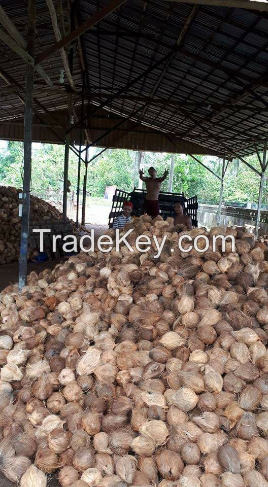 Dried Coconut and Other Coconut Products