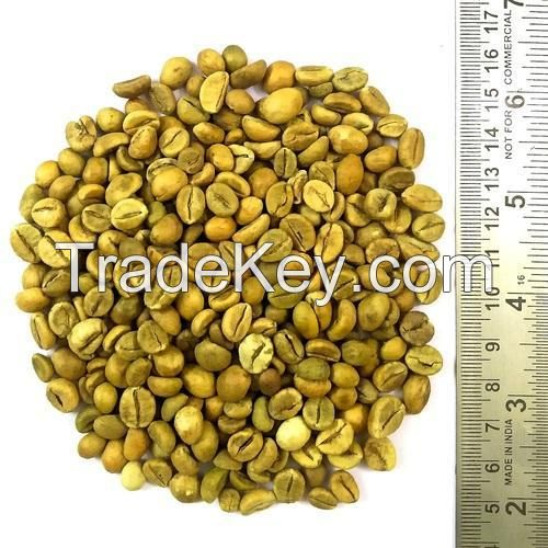 Robusta green coffee beans from Vietnam Factory