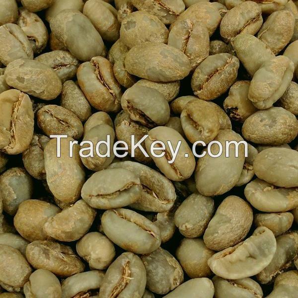 Green Robusta Coffee Beans