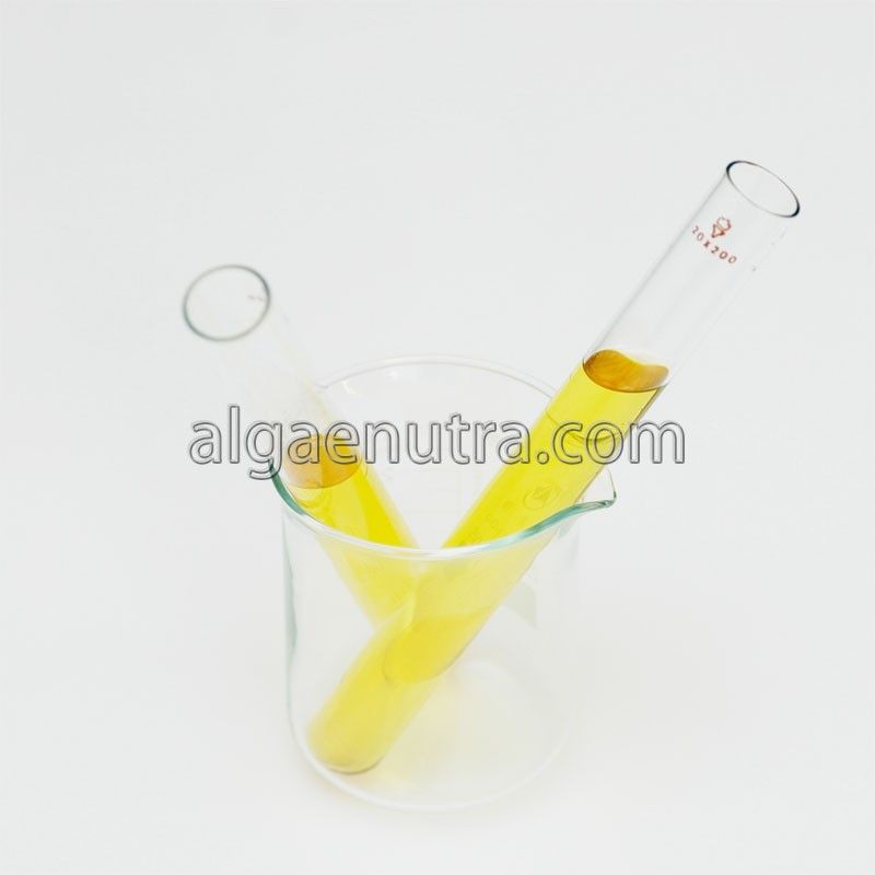 DHA Algal oil(winterized oil) omega-3 fatty acid